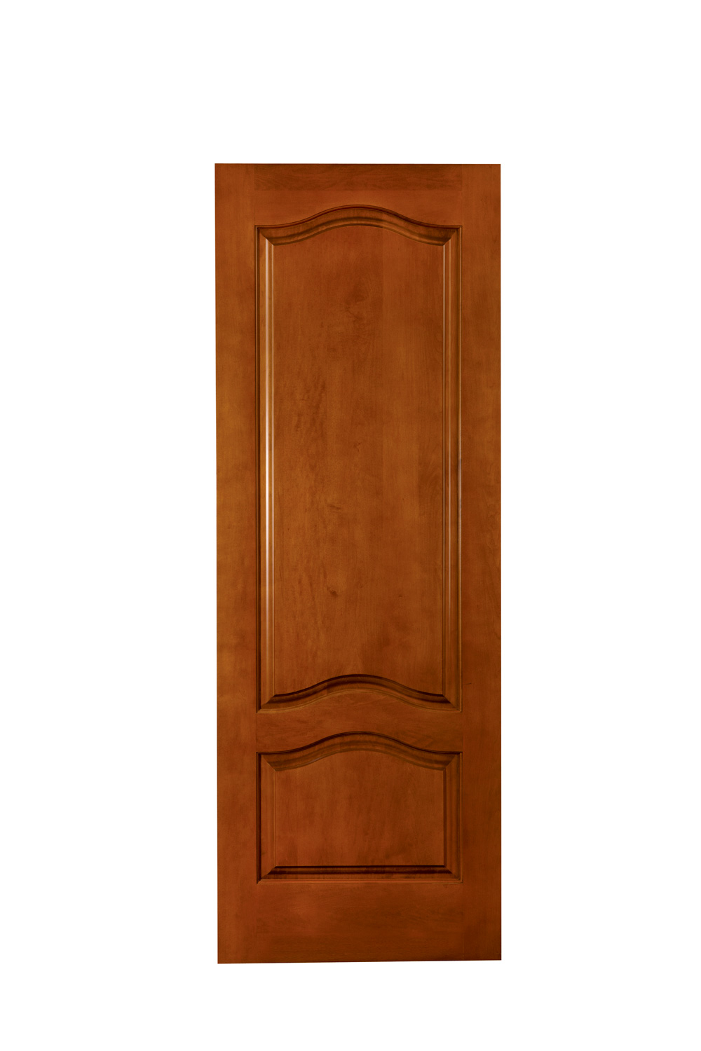 Doors Design: Interior Panel Doors Design
